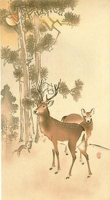 KOSON Deer