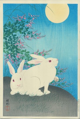 Shoson Rabbits