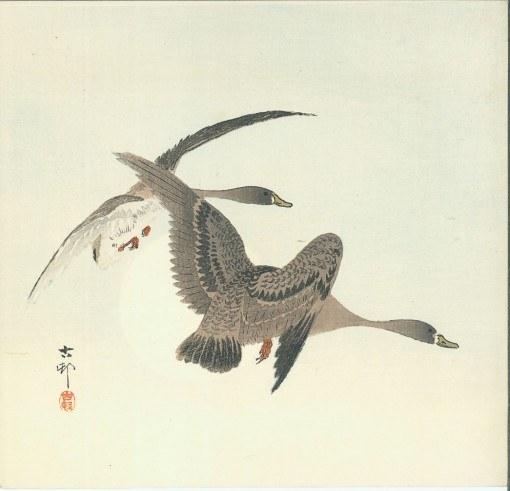 KOSON Shikishiban