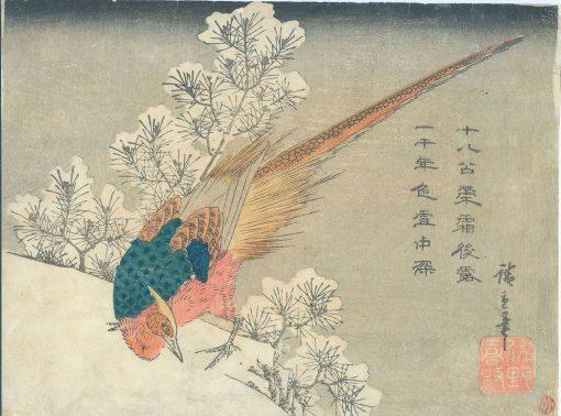 Hiroshige Chuban Pheasant