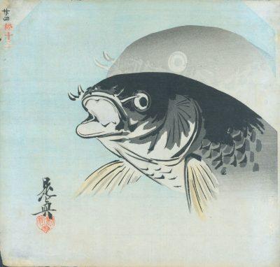 zeshin carp