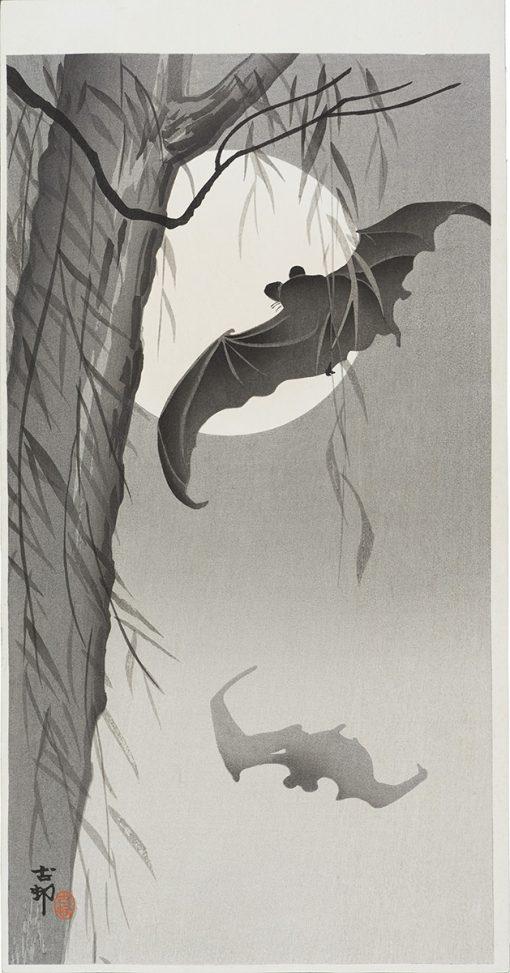 koson bats