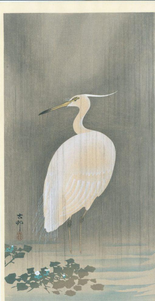 koson egret