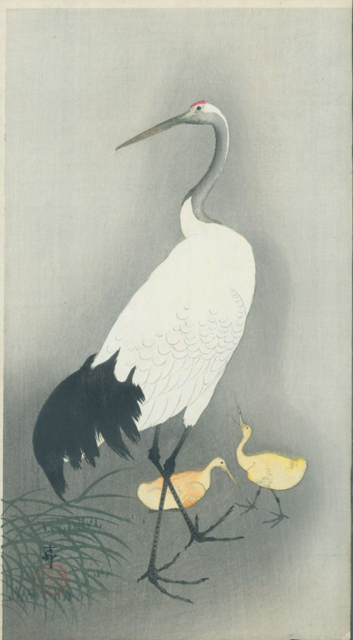koson crane and young