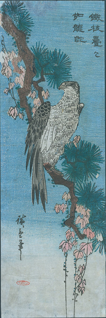 hiroshige-falcoln-on-branch