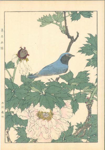 Keinan Blue Bird